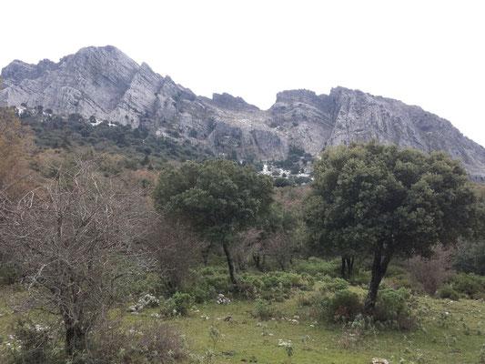 Imposante Felswand der Sierra del Pinar über uns.