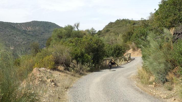 Auf diese Weise schlängelt sich der Weg durch das Tal. Nach jeder Biegung erwartet einen ein schönes Panorama.