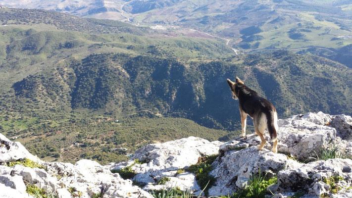 "On the peak of mount ""Peñon de El Gastor"""