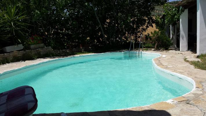 Genieße die Sonne, oder den Schatten, lies ein gutes Buch und spring in den Pool, um Dich abzukühlen!