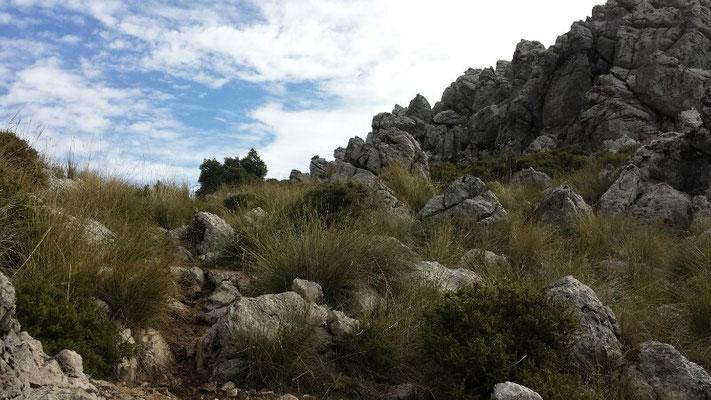 Zum Teil eine unwirkliche Umgebung. Aber die Stille ist herrlich. Und die Felsen ehrfurchtgebietend.