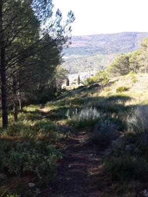 Blick zurück Richtung El Bosque