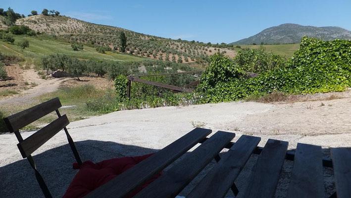Blick aus dem vorderen Fenster Richtung Algodonales