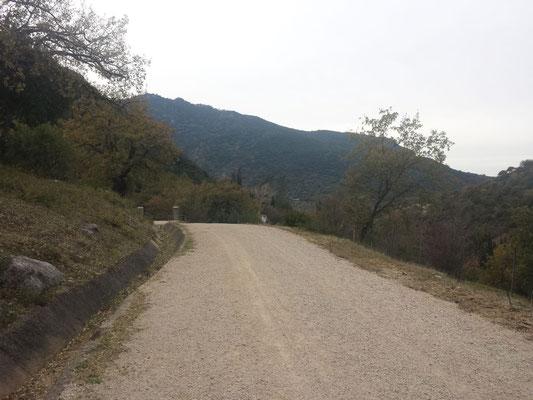 """Ende der Wanderstrecke """"Sendero Del Pinar"""". Durch das Tor und nur noch die Straße hinunter ins Dorf."""