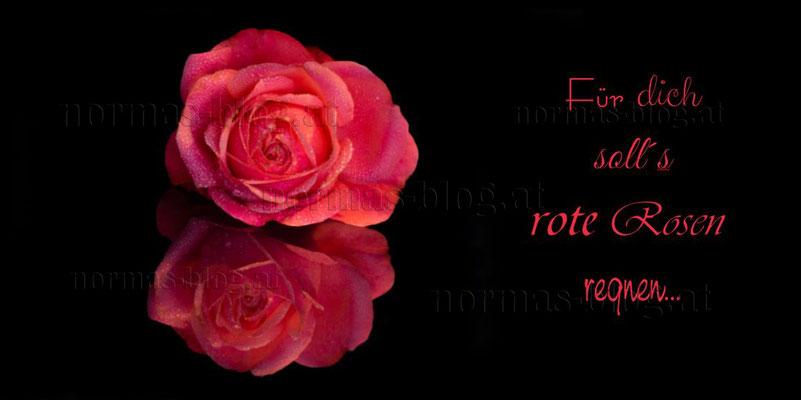 Nr. 9   Für dich soll´s rote Rosen regnen