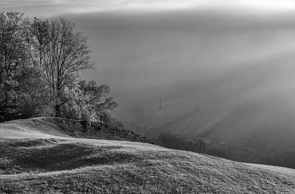 Nebel über dem Rheintal