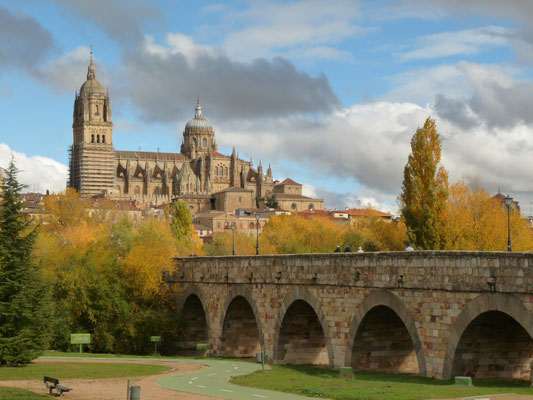 La Catedral de Salamanca y el puente romano - Kathedrale und die römische Brücke