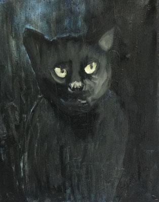Dunkle Nachtkatze, 40 x 32 cm, Öl auf Baumwolle, 2020.