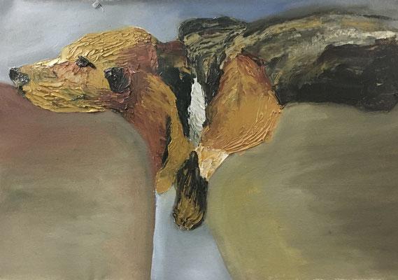 Sleaping Dog, Ölfarbe auf Baumwolle, 36 x 50 cm, 2020