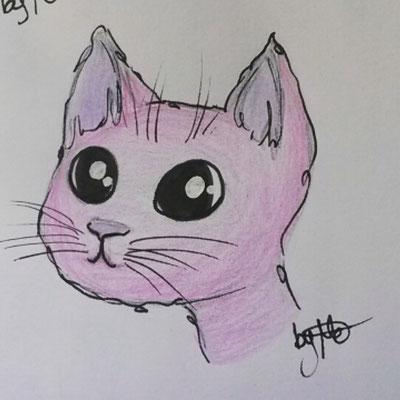 #100kittycats Nr.95
