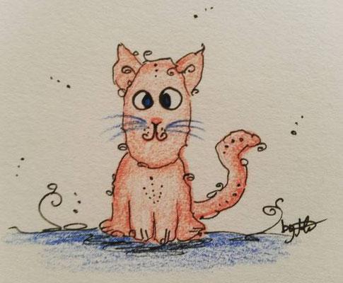 #100kittycats Nr.14