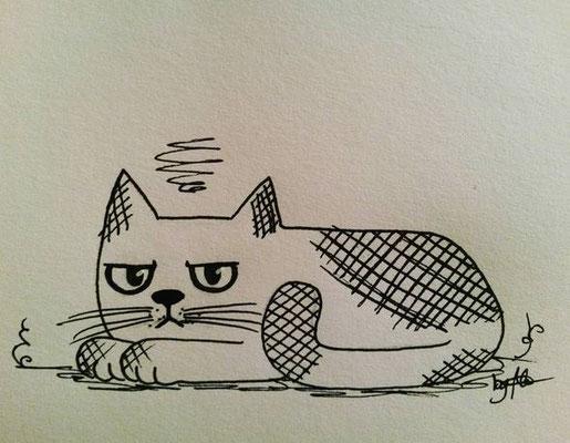 #100kittycats Nr.23