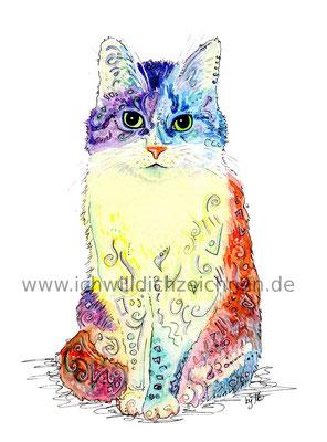 #100kittycats Nr.85