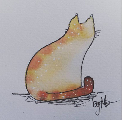 #100kittycats Nr.49