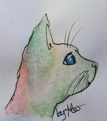 #100kittycats Nr.97