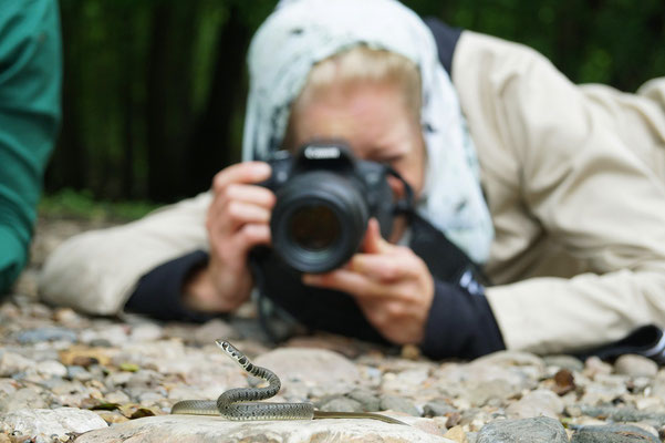 Dahl's Whip Snake and Laura. © Maud Menay-Berroneau