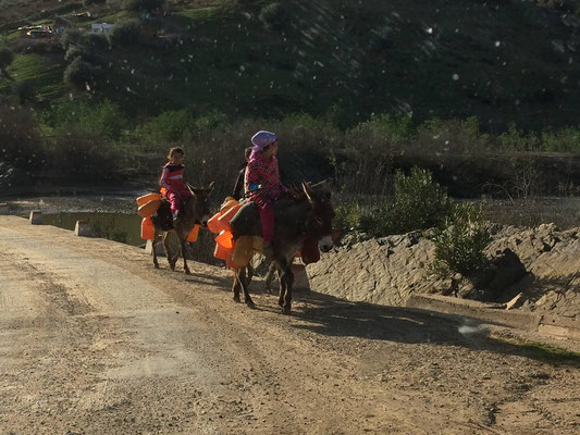 Way of transport in Morocco #2