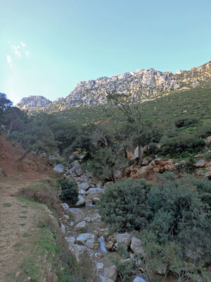 Habitat in the Rif Mountians of several endemic amphibian species.