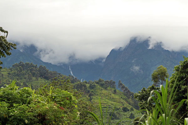 The highest peaks of the Rwenzoris are almost permanently veiled by cloud cover.