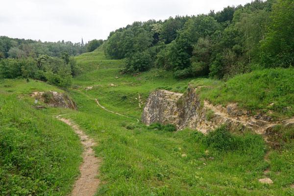 Habitat for several endangered amphibians.