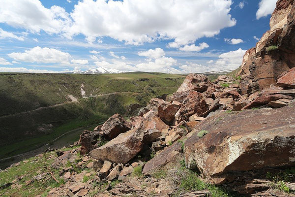 Typical habitat of Kars Lizard and Armenian Viper.