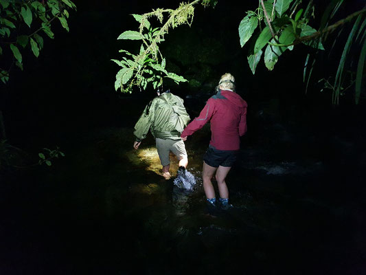 Crossing the stream at night. © Jelmer Groen