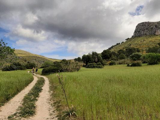 Beautiful scenery in the Serra de Llevant. © Sander Schagen