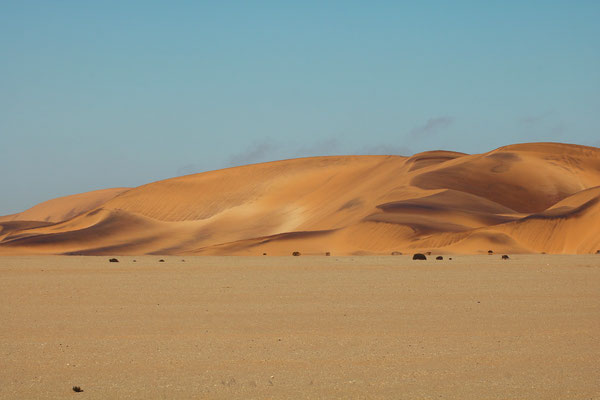 The mesmerizing dunes of the Namib.