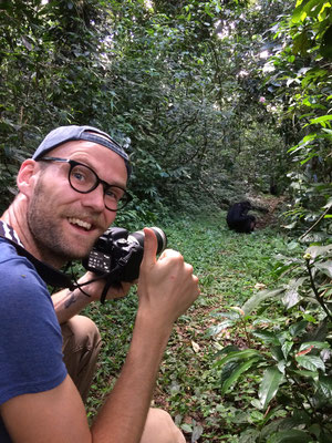 Unexpected encounter, a group of Chimpansees on the trail!