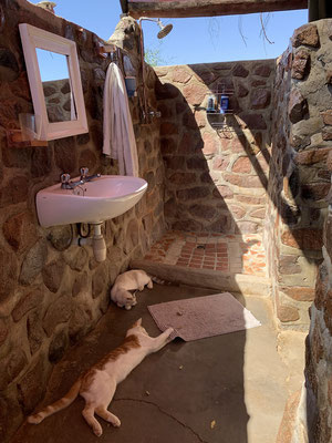Our shower with cats included. © Maarten Slootjes