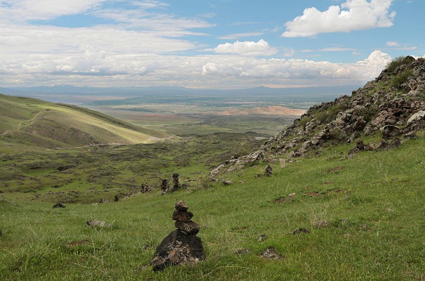Habitat for several species along the slopes of the Ararat.