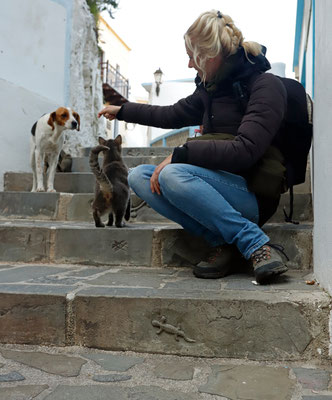 Making new furry friends on the stairs in Olympos.