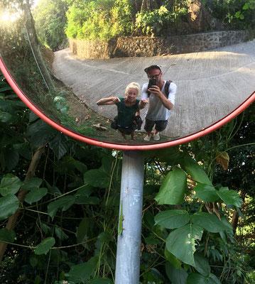 Day gecko selfie!