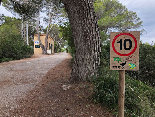 Funny sign at the entrance of Albufera.