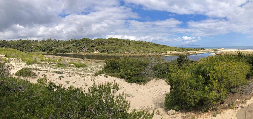 Habitat of Hermann's Tortoise.