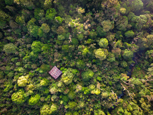 Cloud forest and our cabin from above. © Wouter Beukema