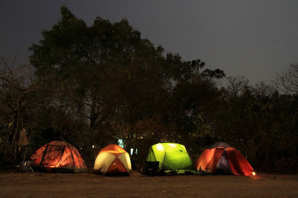 Our tents in Liwonde NP.