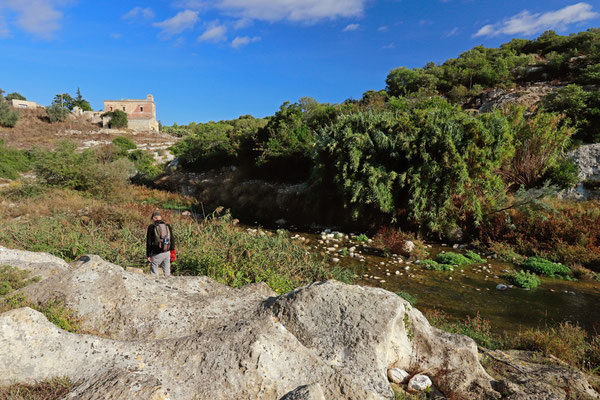 Jelmer searching along the banks of the Torrente Gravina.
