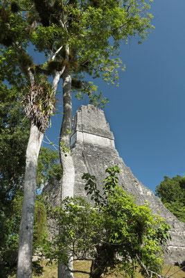 View on Templo II