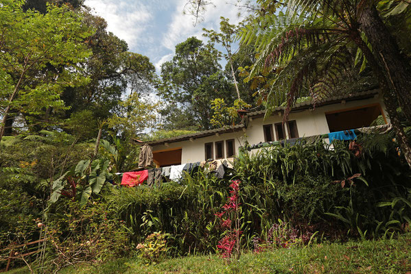 Ranchitos del Quetzal, our cozy rooms in the middle of the Cloud Forest.
