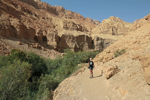 Laura hiking up, up, up in the Wadi Arugot.