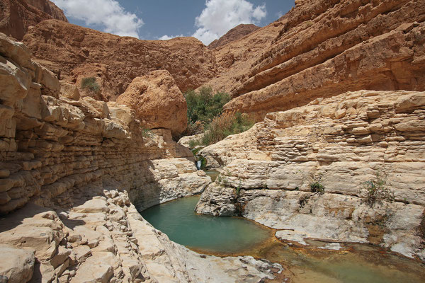 "After hiking through a dry wadi you suddenly come to an area called ""The Upper Pools""."