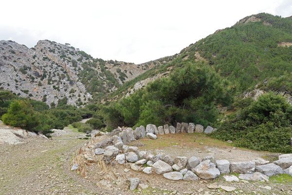 Habitat of Karpathos Salamander, Snake-eyed Skink, Turkish Gecko and Oertzen's Gecko.