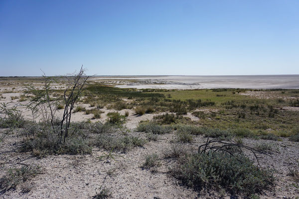 Vast open space at the edge of the Etosha Pan. © Maarten Slootjes
