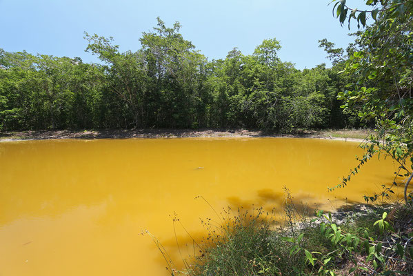 The croc pond