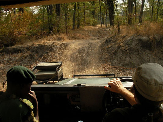 In the jeep with the rhino research team.