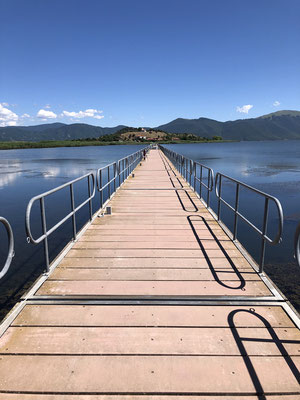 The boardwalk over Mikri Prespa provides a great place for birdwatching and observing aquatic snakes.