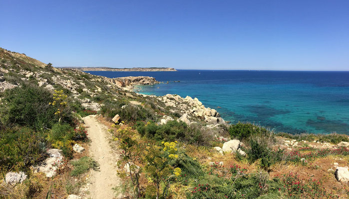 Stunning coastline in the north of Malta.
