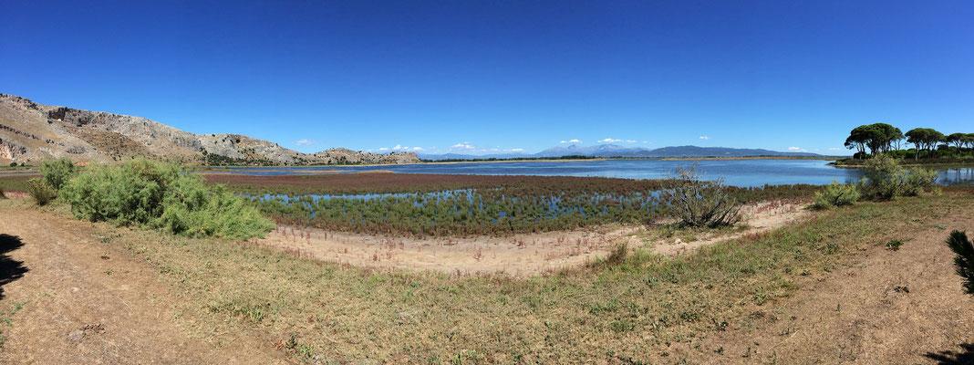 Kalogria marsh