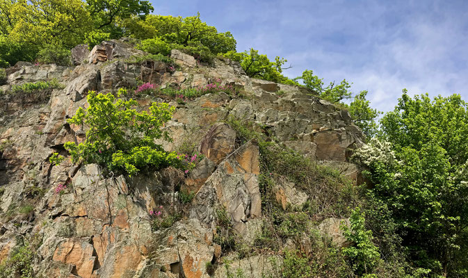 Rocky outcrops along an abandoned railway track, perfect for lizards!
